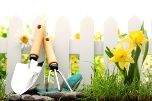 3 Decorative Garden Fence Ideas