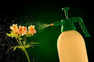 Using Molasses To Boost Fertilizer