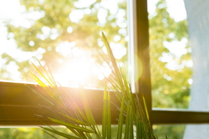 Choosing Energy Efficient Replacement Windows