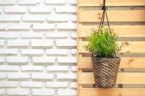 The Best Containers for Small-Space Gardening