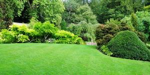 Landscape Fabric Installation Mistakes to Avoid