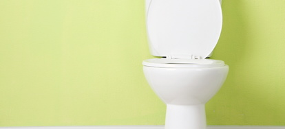 The Pros and Cons of a Back Flush Toilet | DoItYourself com
