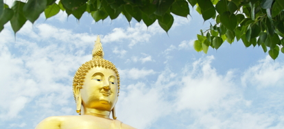 How to celebrate bodhi day doityourself in the world of buddhism an important day of celebration is december 8th this is the day that many buddhists celebrate bodhi day or the occasion when the m4hsunfo