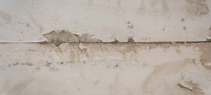How To Locate And Eliminate Drywall Water Damage Mold