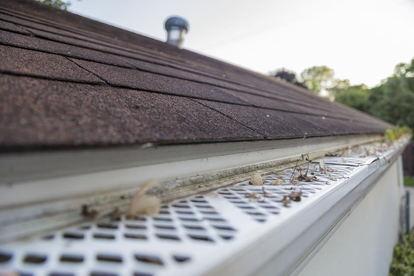 6 Reasons to Switch to PVC Rain Gutters   DoItYourself com