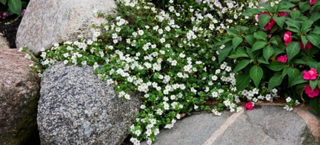 Do It Yourself Home Design: Enhance Your Home Landscape With Rocks And Boulders
