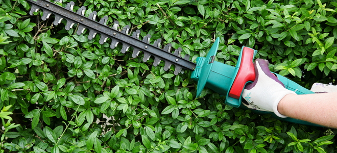 How to Repair an Electric Hedge Trimmer | DoItYourself com