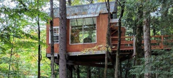 A tree house with a walkway and transparent walls
