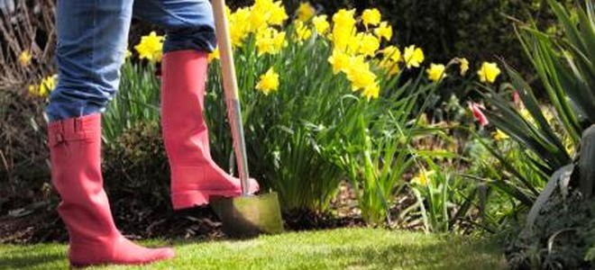 Monthly Maintenance Checklists For Your Garden: Spring Monthly Maintenance  Checklists For Your Garden: Spring