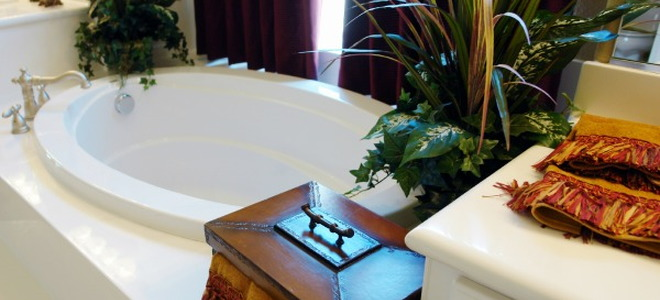 Create A Tropical Themed Bathroom With Plants That Love Humidity |  DoItYourself.com