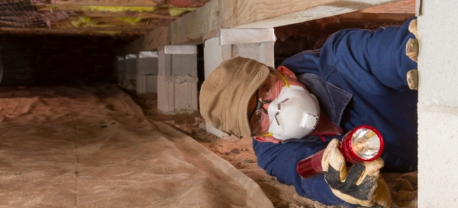How to treat crawlspace mold doityourself how to treat crawlspace mold how to treat crawlspace mold solutioingenieria Choice Image