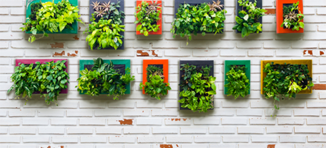 there are many good reasons why vertical gardens have become a popular addition to many homes not only are these living walls appealing to the eye with - Wall Garden