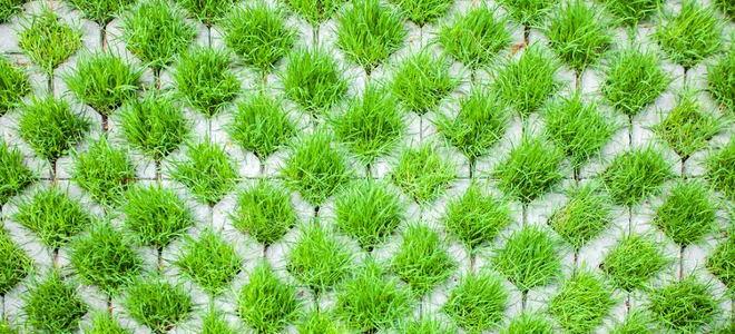 Grasscrete 101 Doityourself Com