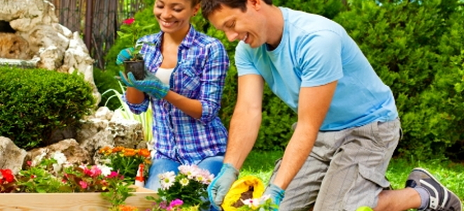 Answers to flower gardening questions for Gardening questionnaire