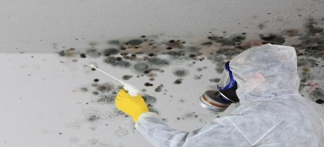 Symptoms of Black Mold Poisoning