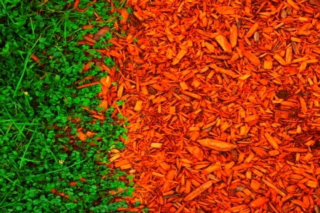 Does Red Mulch Dye Ruin Any Of The Benefits Of Mulching