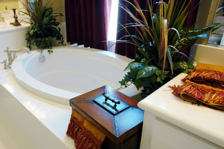 Create A Tropical Themed Bathroom With Plants That Love