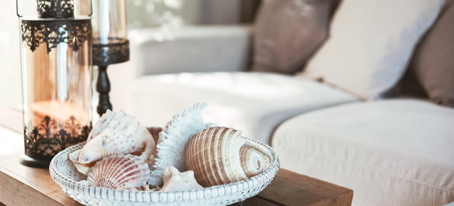 natural design with seashells on a coffee table and neutral tone pillows
