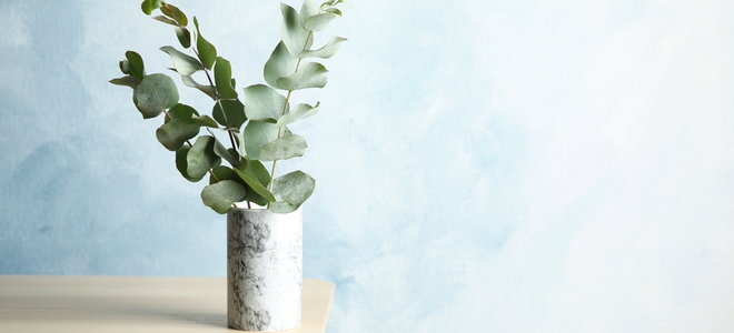natural design with green leaves in a small jar on a table by a blue wall