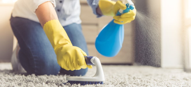 cleaning a carpet with a spray bottle and brush