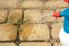 weeds growing between paver stones