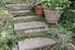 concrete steps in a garden