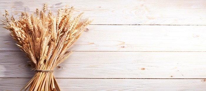 sheaf of various grains