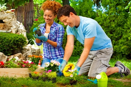 answers to flower gardening questions doityourselfcom