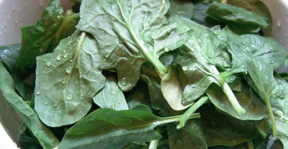 28_Spinach.jpg