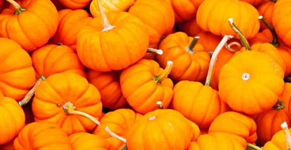 31_Pumpkins.jpg