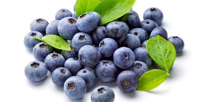 blueberries_000014200421_Small.jpg