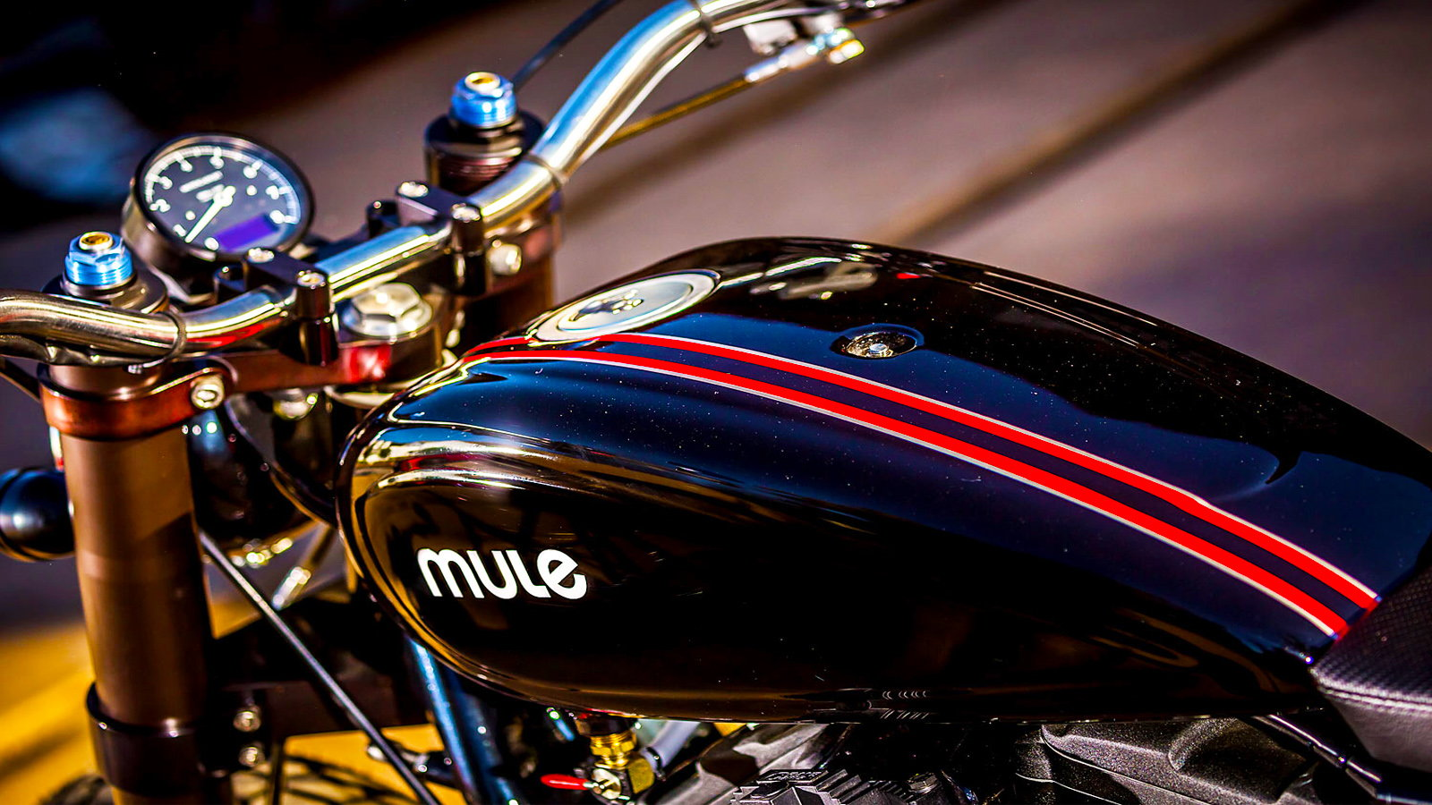883 Tracker From Mule Motorcycles is Rupert's Ride | Hdforums