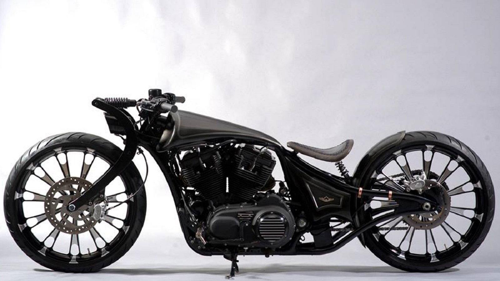 Indian-Built Custom Iron 883 Looks like the Future