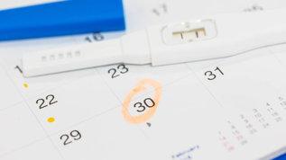 ovulation prediction kit ovulation prediction stick