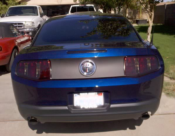 Ford Mustang V6 2005 2014 Window Tint Modifications