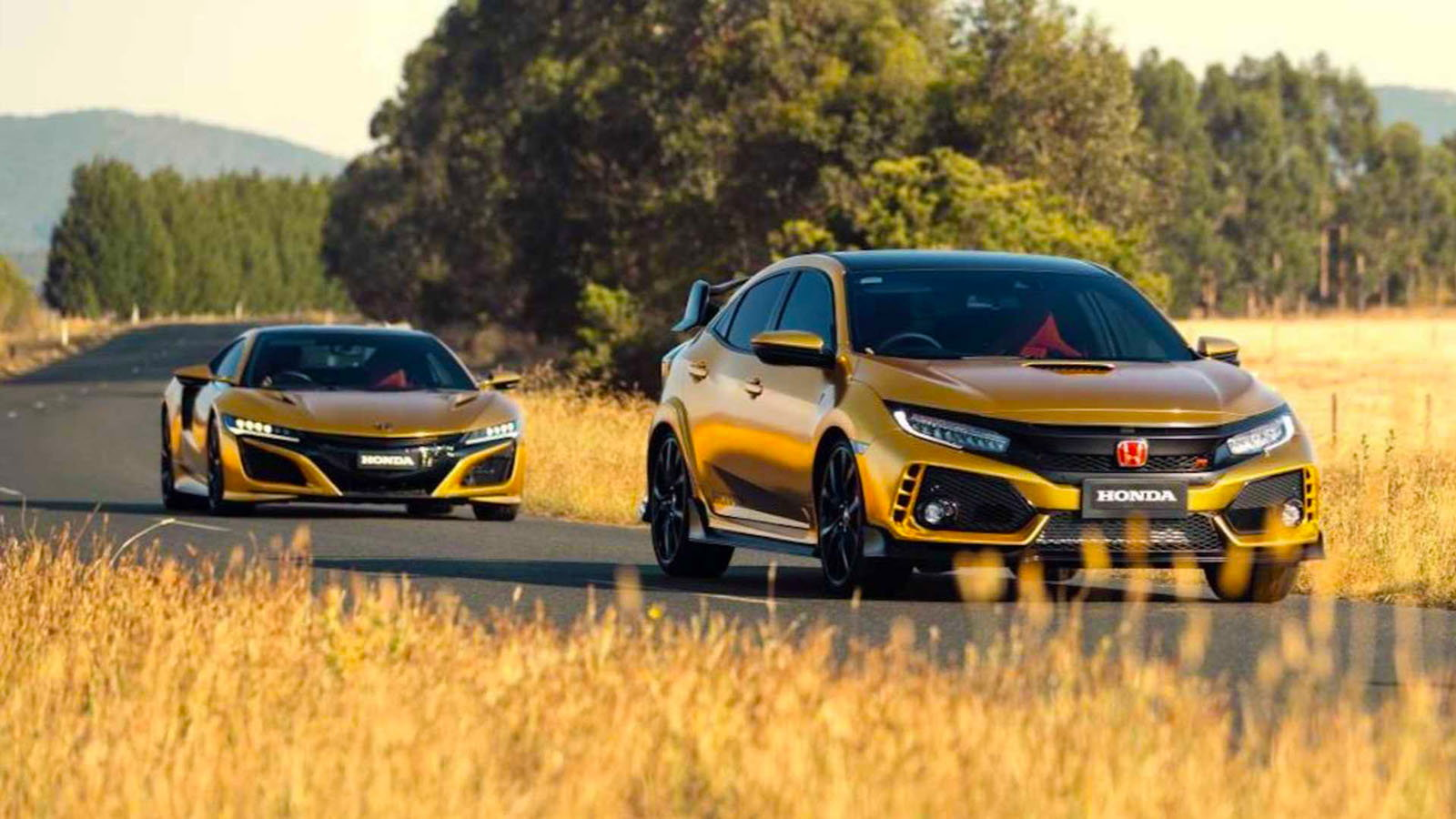 Honda's Golden Anniversary Produces Special NSX and Type R Civic