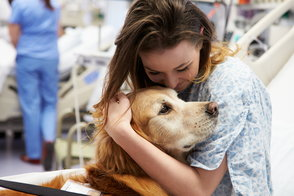 My Experience with Pet Therapy