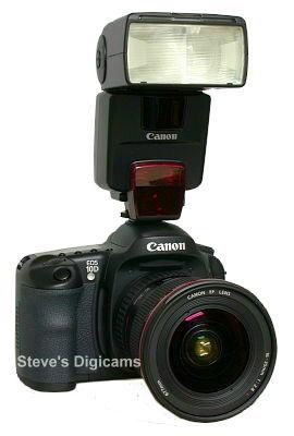 Canon EOS 10D with Canon 550EX speedlight, image (c) 2003 Steve's Digicams
