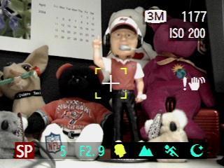 Fuji Finepix S20 Pro Zoom