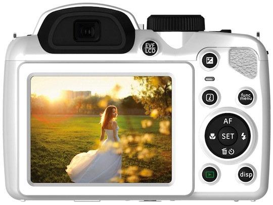 x600-white-back.jpg