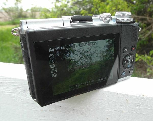 back 2 Canon M6.jpg