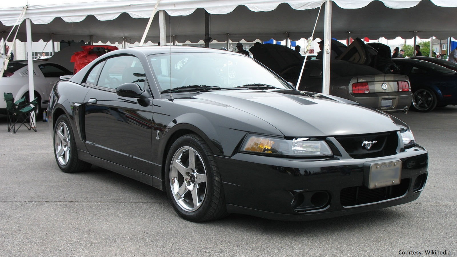 7 Fastest Mustangs Ever Produced | Themustangsource