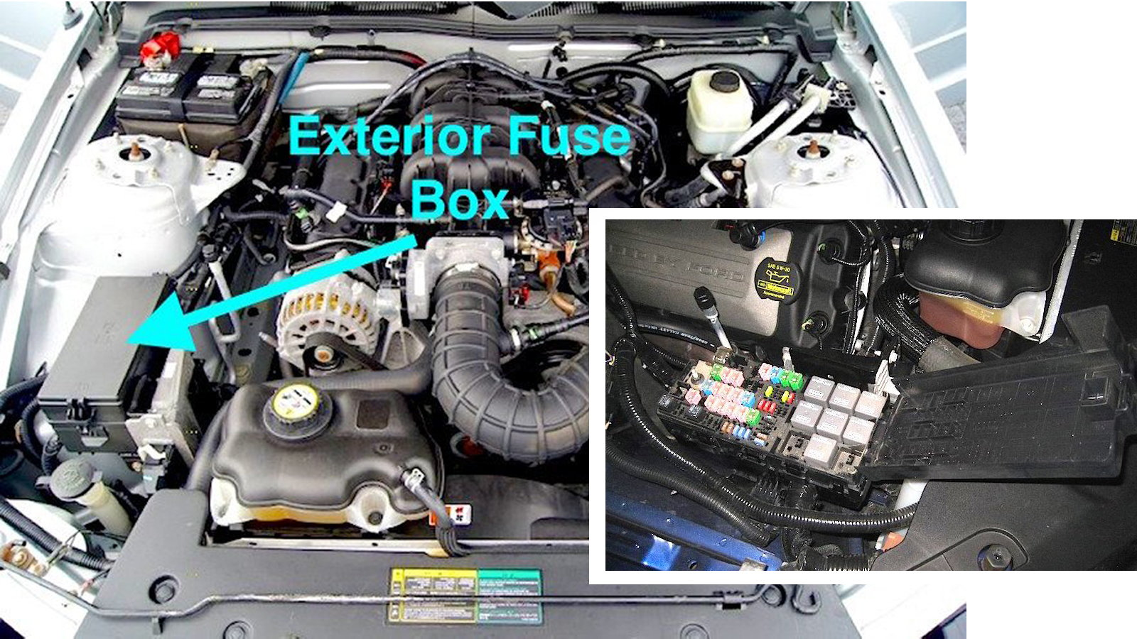 Mustang Fuse Box Guide Fifth Gen Themustangsource
