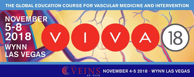 VIVA 2018 and The VEINS at VIVA meeting info.