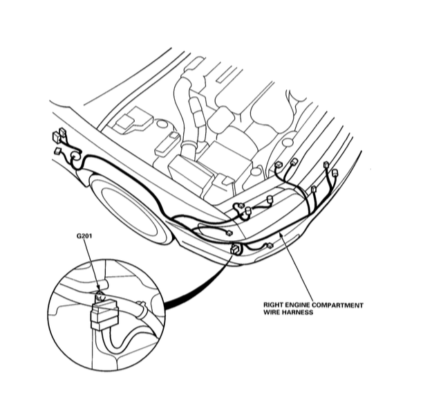 Engine Compartment Wiring Harness
