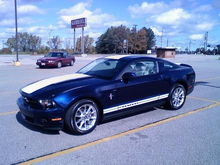 2010 Mustang Striped