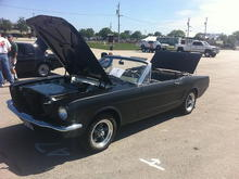 Mustang2small