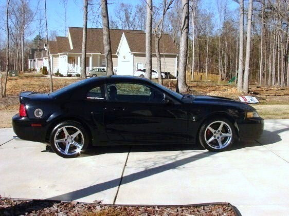 03 SVT Mustang Cobra