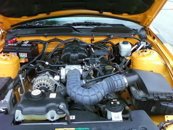4.0 stock V6