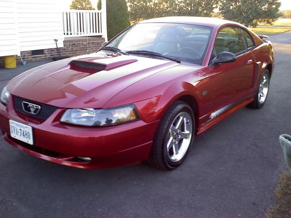2003 mustang GT stock front view